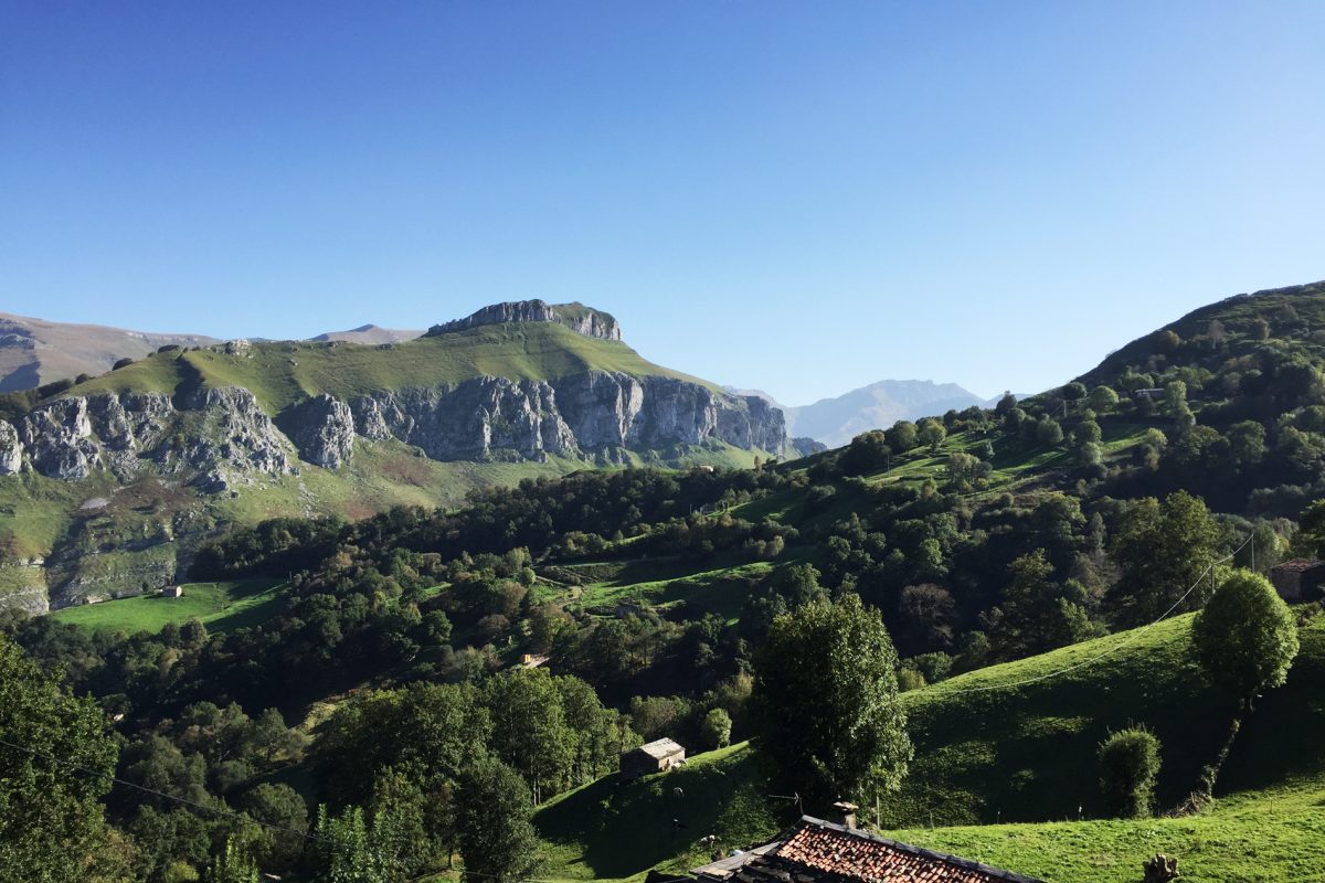 A GREEN PARADISE – Villa Slow